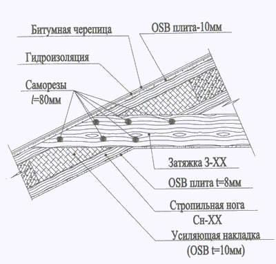 p13_image1